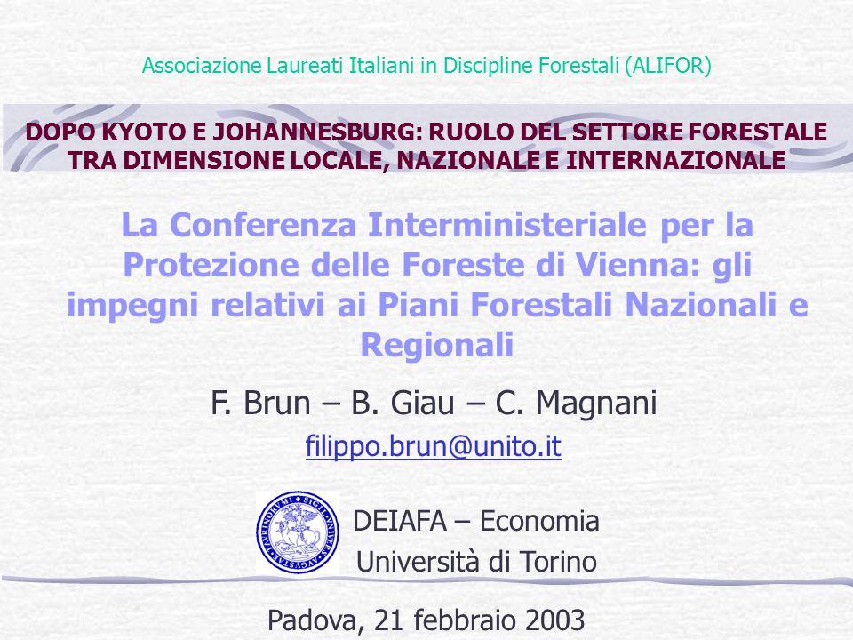 Associazione Laureati Italiani in Discipline Forestali (ALIFOR) DOPO KYOTO E JOHANNESBURG: RUOLO DEL SETTORE FORESTALE TRA DIMENSIONE LOCALE, NAZIONALE E INTERNAZIONALE La Conferenza Interministeriale per la Protezione delle Foreste di Vienna: gli impegni relativi ai Piani Forestali Nazionali e Regionali F.