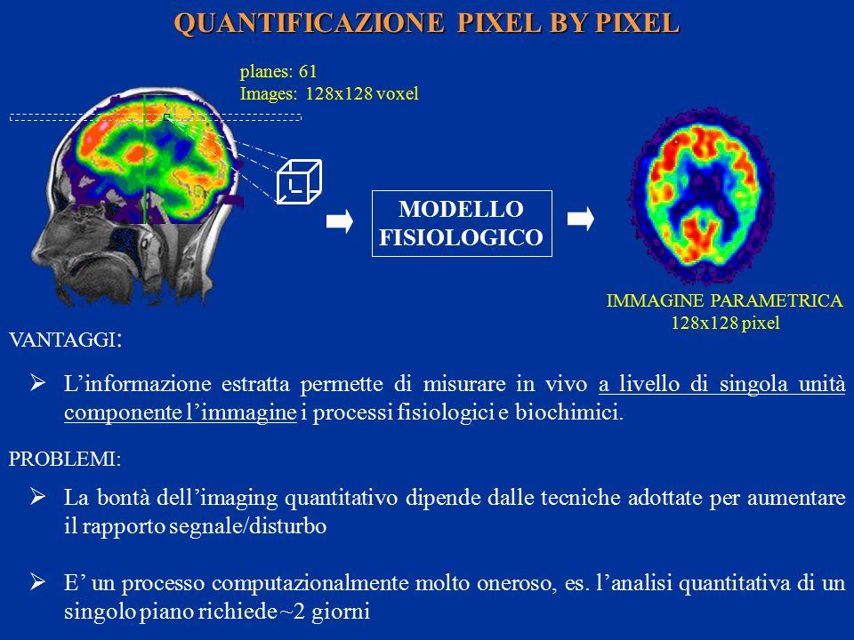 MODELLO FISIOLOGICO QUANTIFICAZIONE PIXEL BY PIXEL  L'informazione estratta permette di misurare in vivo a livello di singola unità componente l'immagine i processi fisiologici e biochimici.