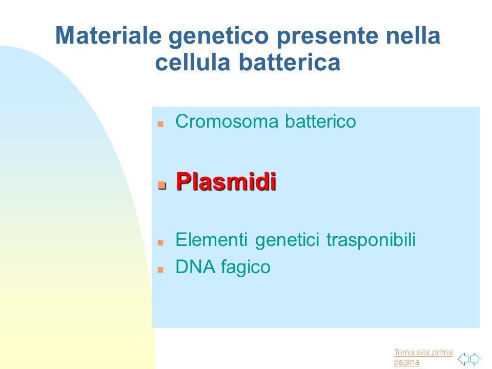 Torna alla prima pagina Materiale genetico presente nella cellula batterica n Cromosoma batterico n Plasmidi n Elementi genetici trasponibili n DNA fa