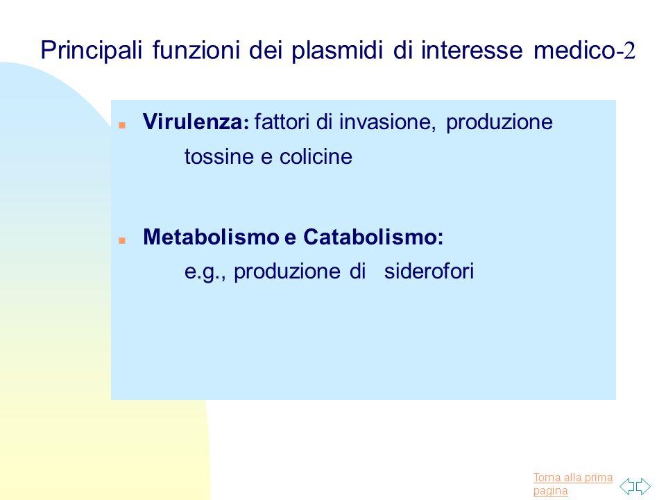 Torna alla prima pagina Principali funzioni dei plasmidi di interesse medico -2 n Virulenza : fattori di invasione, produzione tossine e colicine n Me