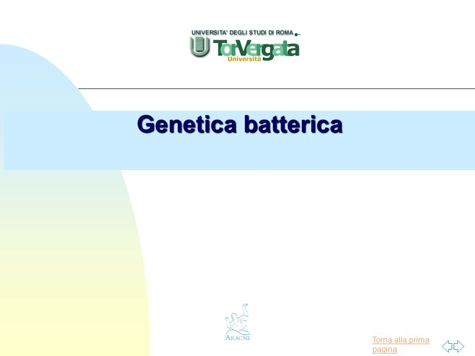 Torna alla prima pagina Materiale genetico presente nella cellula batterica n Cromosoma batterico n Plasmidi n Elementi genetici trasponibili n DNA fagico
