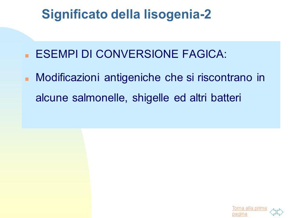 Torna alla prima pagina Significato della lisogenia-2 n ESEMPI DI CONVERSIONE FAGICA: n Modificazioni antigeniche che si riscontrano in alcune salmone