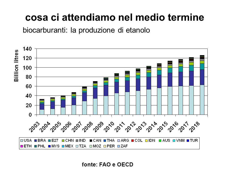 cosa ci attendiamo nel medio termine fonte: FAO e OECD biocarburanti: la produzione di etanolo