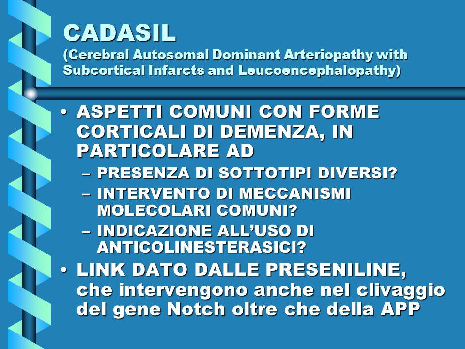 CADASIL (Cerebral Autosomal Dominant Arteriopathy with Subcortical Infarcts and Leucoencephalopathy) ASPETTI COMUNI CON FORME CORTICALI DI DEMENZA, IN PARTICOLARE ADASPETTI COMUNI CON FORME CORTICALI DI DEMENZA, IN PARTICOLARE AD –PRESENZA DI SOTTOTIPI DIVERSI.