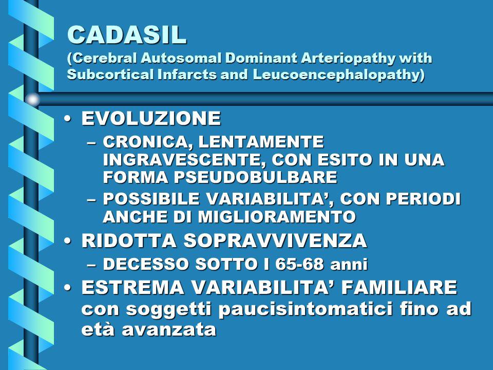 CADASIL (Cerebral Autosomal Dominant Arteriopathy with Subcortical Infarcts and Leucoencephalopathy) EVOLUZIONEEVOLUZIONE –CRONICA, LENTAMENTE INGRAVESCENTE, CON ESITO IN UNA FORMA PSEUDOBULBARE –POSSIBILE VARIABILITA', CON PERIODI ANCHE DI MIGLIORAMENTO RIDOTTA SOPRAVVIVENZARIDOTTA SOPRAVVIVENZA –DECESSO SOTTO I 65-68 anni ESTREMA VARIABILITA' FAMILIARE con soggetti paucisintomatici fino ad età avanzataESTREMA VARIABILITA' FAMILIARE con soggetti paucisintomatici fino ad età avanzata