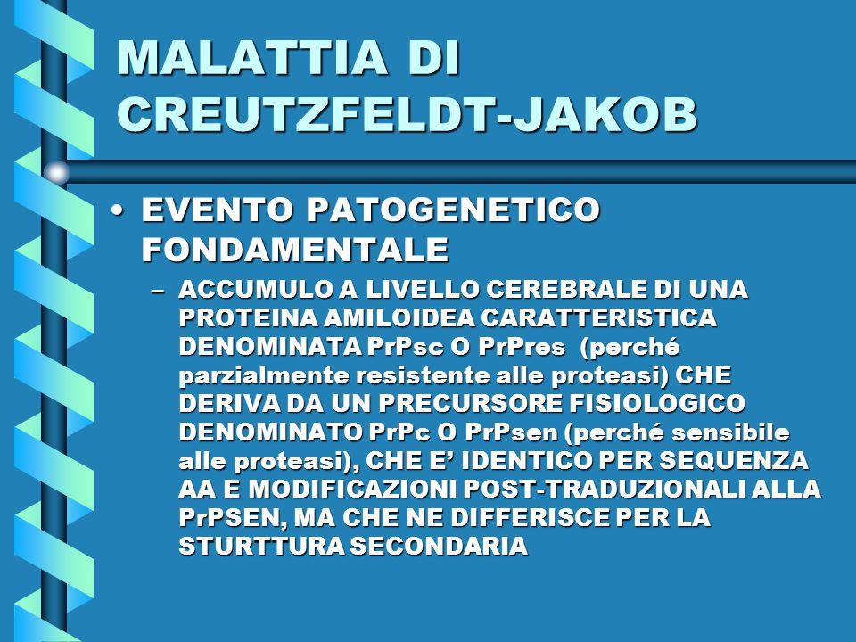 MALATTIA DI CREUTZFELDT-JAKOB EVENTO PATOGENETICO FONDAMENTALEEVENTO PATOGENETICO FONDAMENTALE –ACCUMULO A LIVELLO CEREBRALE DI UNA PROTEINA AMILOIDEA CARATTERISTICA DENOMINATA PrPsc O PrPres (perché parzialmente resistente alle proteasi) CHE DERIVA DA UN PRECURSORE FISIOLOGICO DENOMINATO PrPc O PrPsen (perché sensibile alle proteasi), CHE E' IDENTICO PER SEQUENZA AA E MODIFICAZIONI POST-TRADUZIONALI ALLA PrPSEN, MA CHE NE DIFFERISCE PER LA STURTTURA SECONDARIA