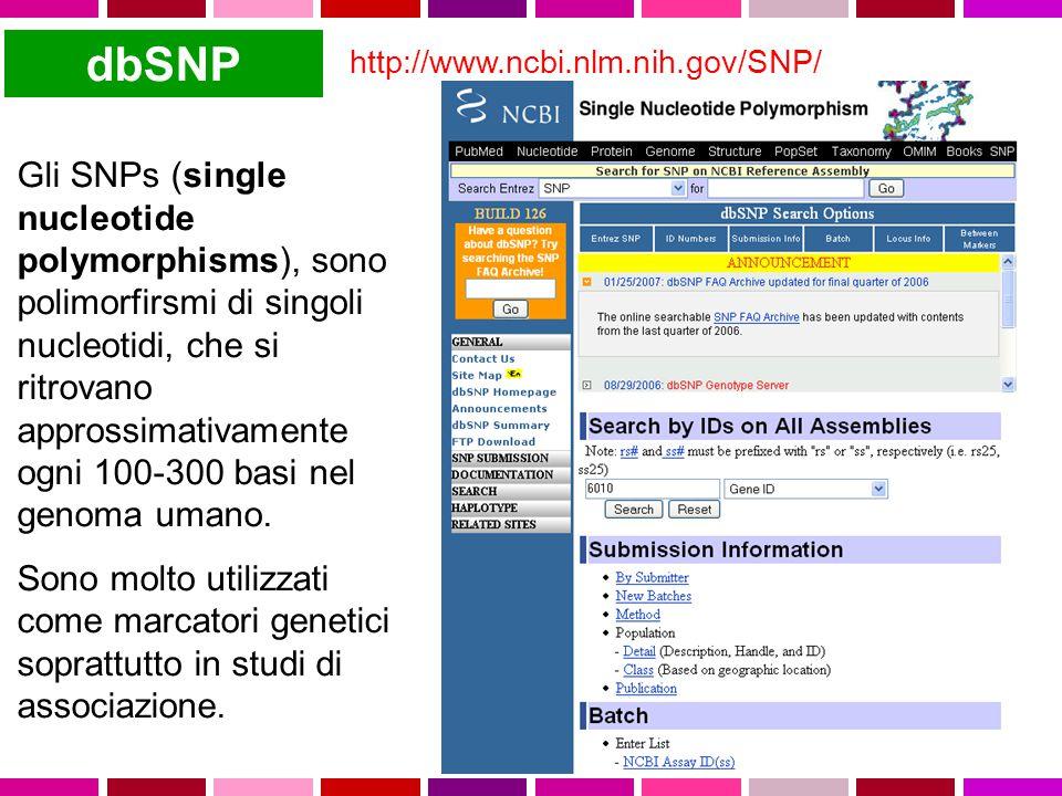 dbSNP http://www.ncbi.nlm.nih.gov/SNP/ Gli SNPs (single nucleotide polymorphisms), sono polimorfirsmi di singoli nucleotidi, che si ritrovano approssimativamente ogni 100-300 basi nel genoma umano.