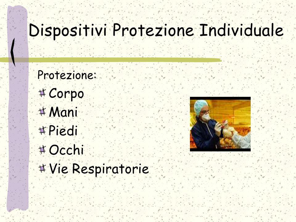 Dispositivi Protezione Individuale Protezione: Corpo Mani Piedi Occhi Vie Respiratorie