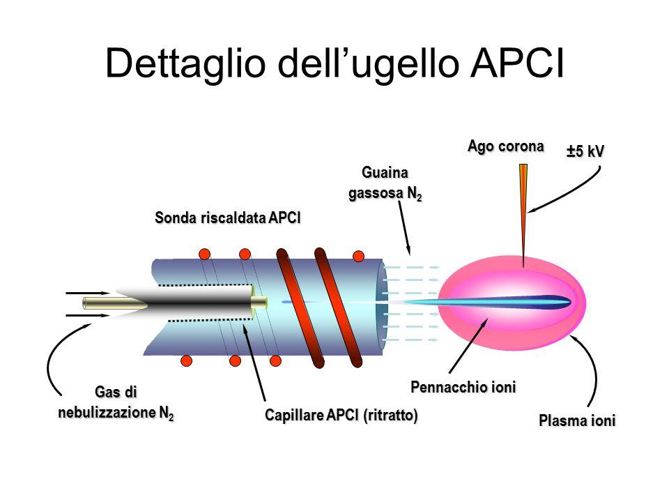 Dettaglio dell'ugello APCI Guaina gassosa N 2 Sonda riscaldata APCI Capillare APCI (ritratto) Pennacchio ioni ±5 kV Ago corona Plasma ioni Gas di nebulizzazione N 2
