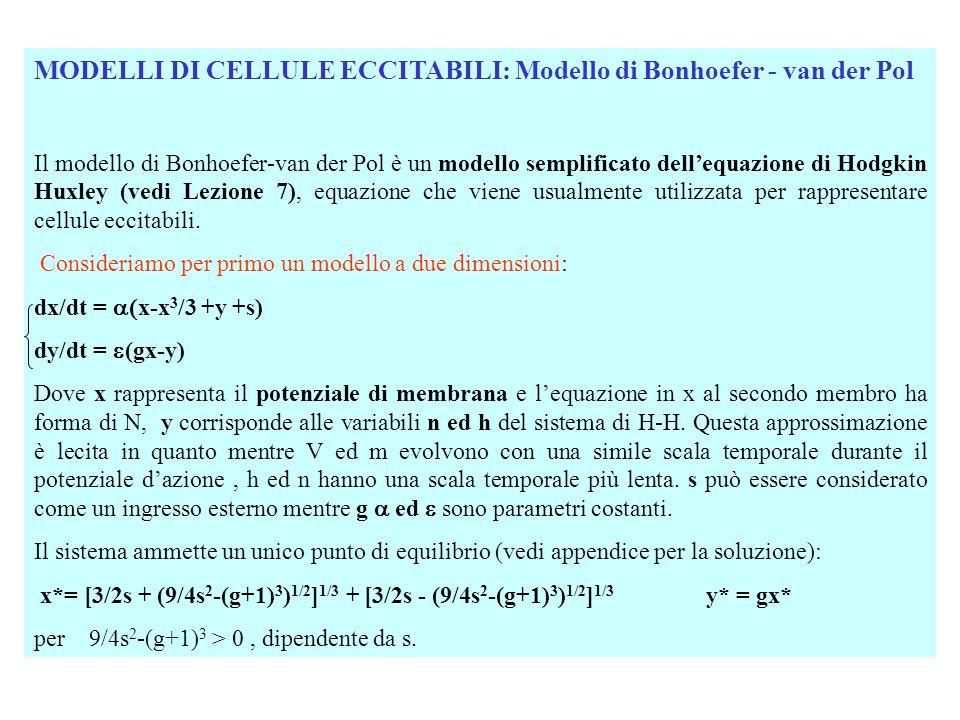 MODELLI DI CELLULE ECCITABILI: Modello di Bonhoefer - van der Pol Il modello di Bonhoefer-van der Pol è un modello semplificato dell'equazione di Hodg