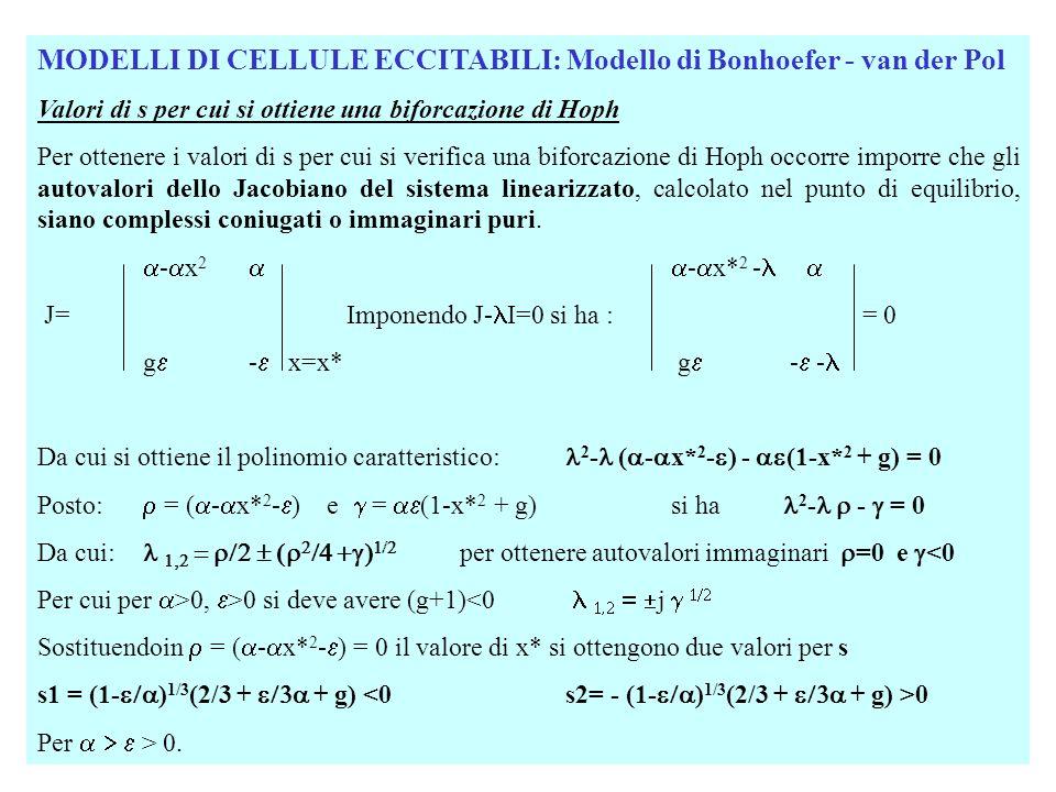 MODELLI DI CELLULE ECCITABILI: Modello di Bonhoefer - van der Pol Valori di s per cui si ottiene una biforcazione di Hoph Per ottenere i valori di s p