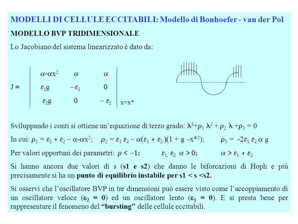 MODELLI DI CELLULE ECCITABILI: Modello di Bonhoefer - van der Pol MODELLO BVP TRIDIMENSIONALE Lo Jacobiano del sistema linearizzato è dato da:  -  x