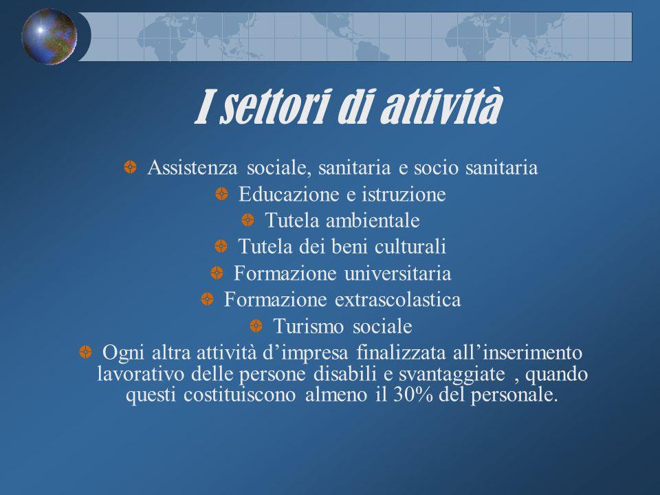 I settori di attività Assistenza sociale, sanitaria e socio sanitaria Educazione e istruzione Tutela ambientale Tutela dei beni culturali Formazione u