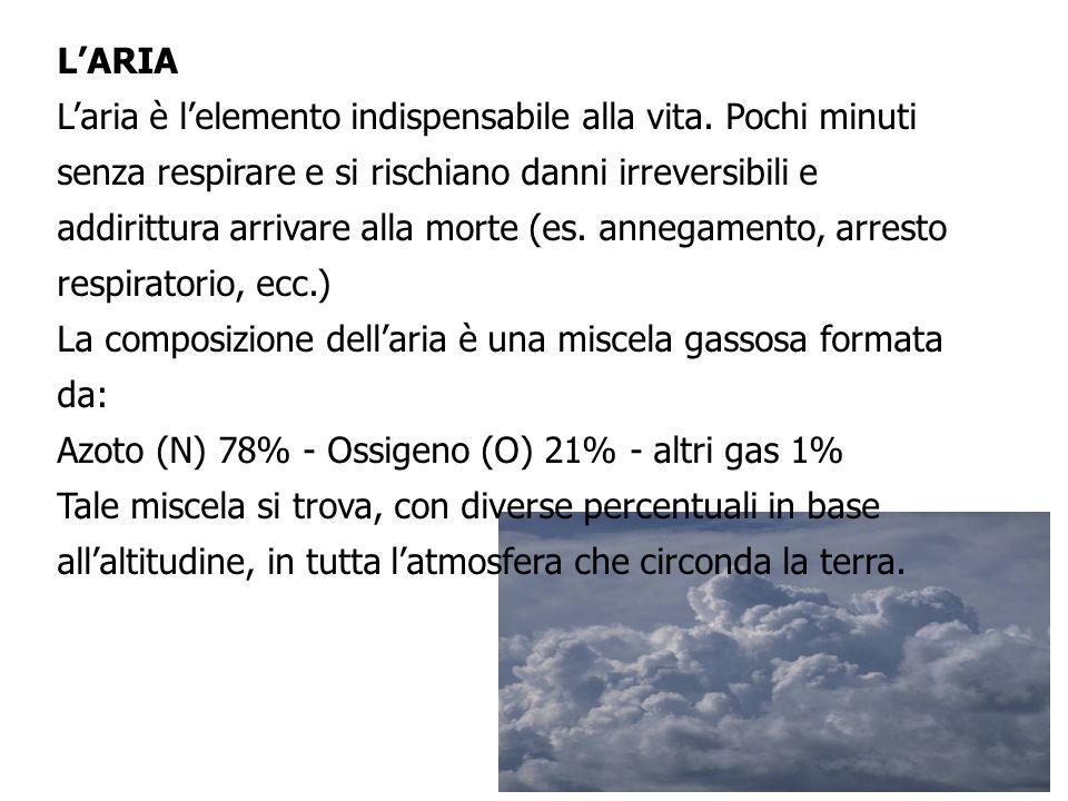 L'ARIA L'aria è l'elemento indispensabile alla vita.