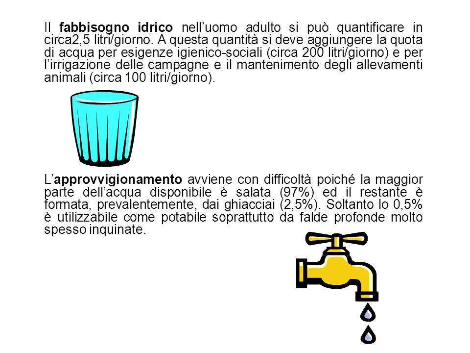 Il fabbisogno idrico nell'uomo adulto si può quantificare in circa2,5 litri/giorno. A questa quantità si deve aggiungere la quota di acqua per esigenz