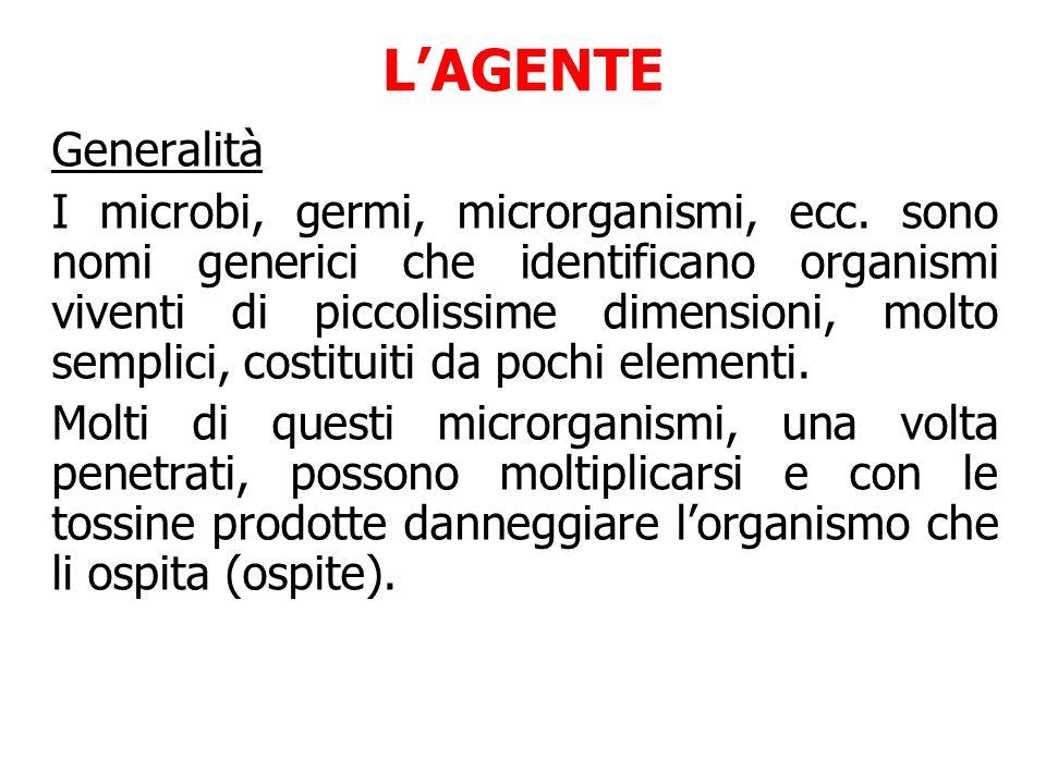 Generalità I microbi, germi, microrganismi, ecc.