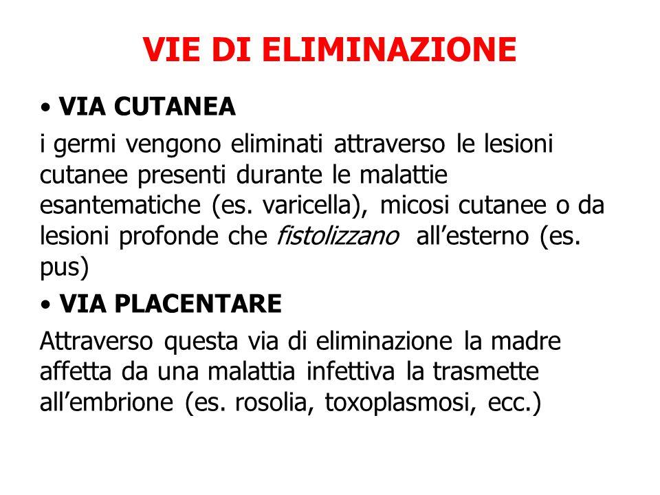 VIA CUTANEA i germi vengono eliminati attraverso le lesioni cutanee presenti durante le malattie esantematiche (es. varicella), micosi cutanee o da le