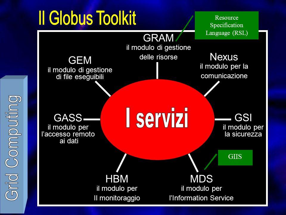 GEM il modulo di gestione di file eseguibili GASS il modulo per l'accesso remoto ai dati HBM il modulo per Il monitoraggio MDS il modulo per l'Information Service GSI il modulo per la sicurezza Nexus il modulo per la comunicazione GRAM il modulo di gestione delle risorse Resource Specification Language (RSL) GRISGIIS
