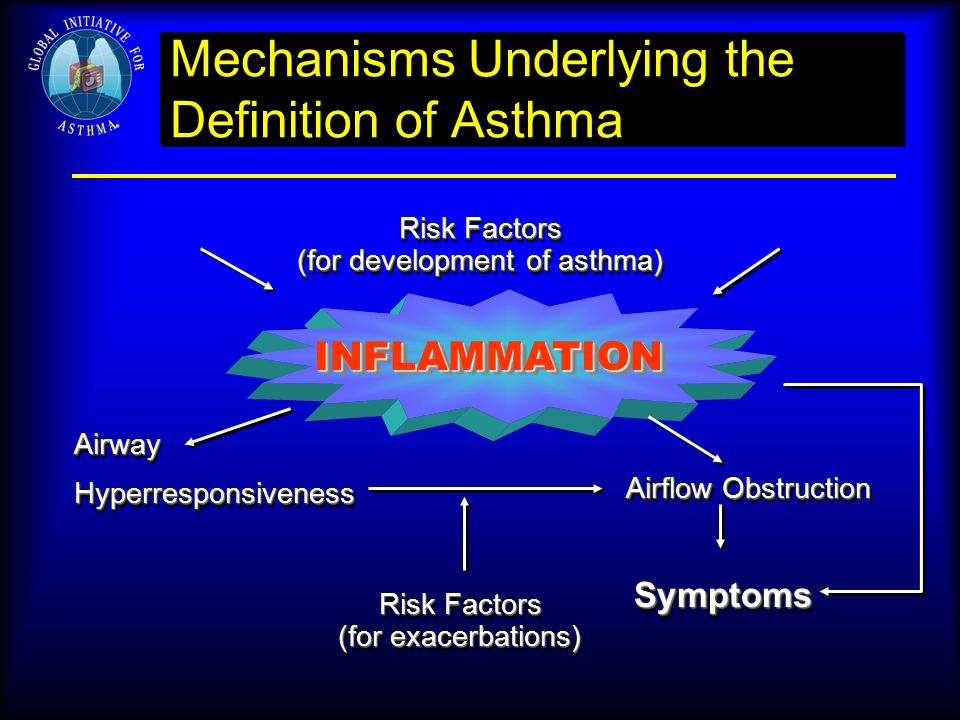 Mechanisms Underlying the Definition of Asthma Risk Factors (for development of asthma) Risk Factors (for development of asthma) INFLAMMATIONINFLAMMAT