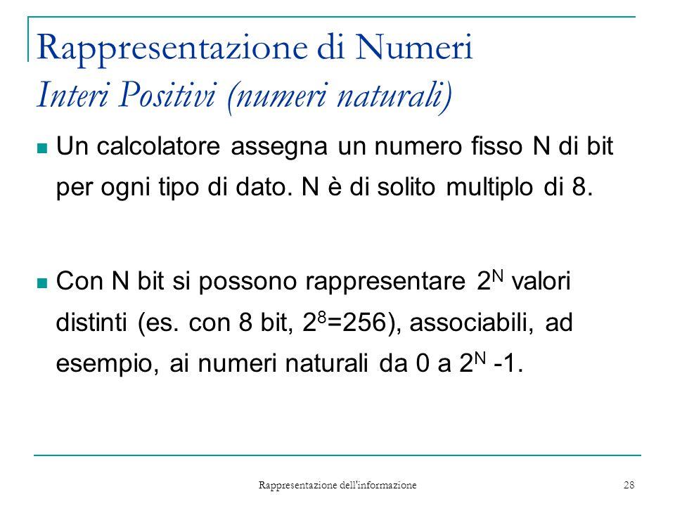 Rappresentazione dell'informazione 28 Rappresentazione di Numeri Interi Positivi (numeri naturali) Un calcolatore assegna un numero fisso N di bit per
