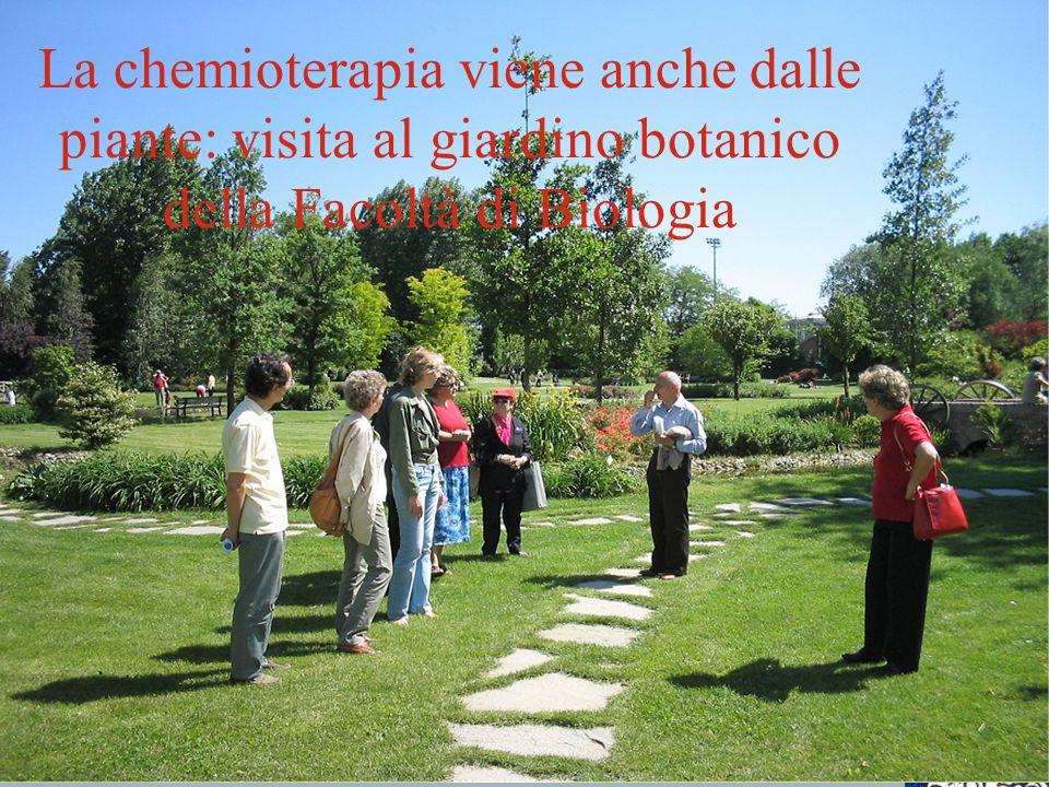 La chemioterapia viene anche dalle piante: visita al giardino botanico della Facoltà di Biologia