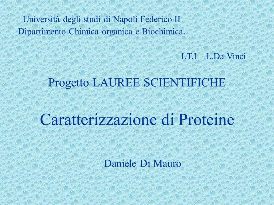 Caratterizzazione di Proteine Daniele Di Mauro I.T.I. L.Da Vinci Università degli studi di Napoli Federico II Dipartimento Chimica organica e Biochimi