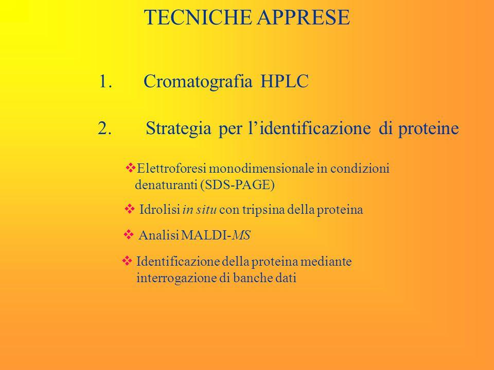 Cromatografia HPLC Selettività, Efficienza Risoluzione.