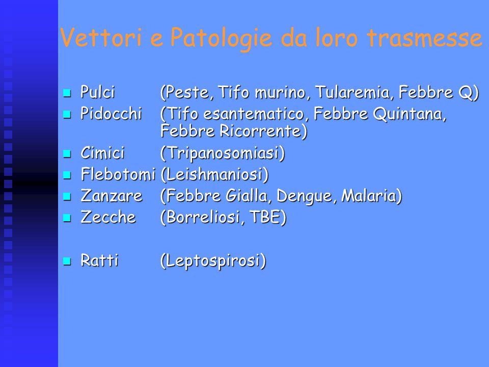 Vettori e Patologie da loro trasmesse Pulci (Peste, Tifo murino, Tularemia, Febbre Q) Pulci (Peste, Tifo murino, Tularemia, Febbre Q) Pidocchi (Tifo e