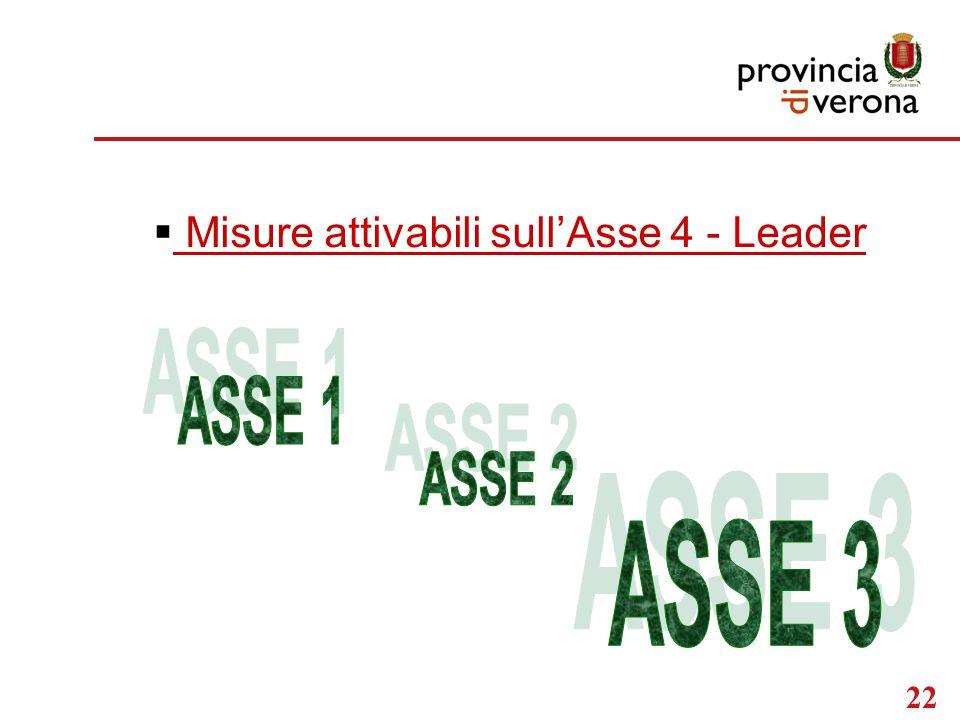 22  Misure attivabili sull'Asse 4 - Leader