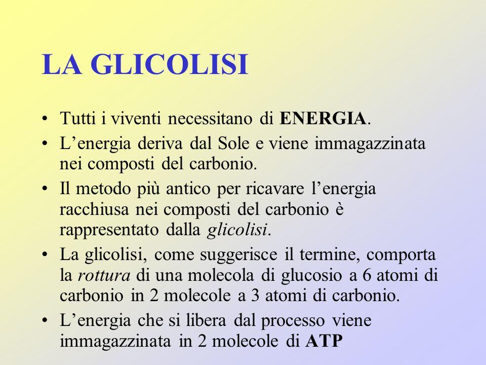 LA GLICOLISI Tutti i viventi necessitano di ENERGIA.