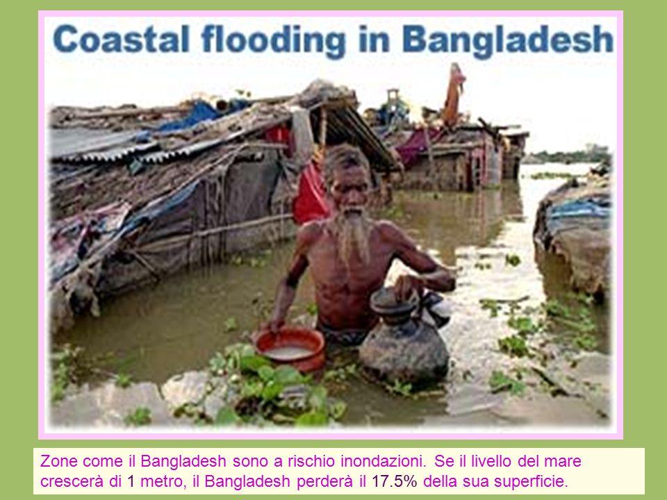 Zone come il Bangladesh sono a rischio inondazioni. Se il livello del mare crescerà di 1 metro, il Bangladesh perderà il 17.5% della sua superficie.