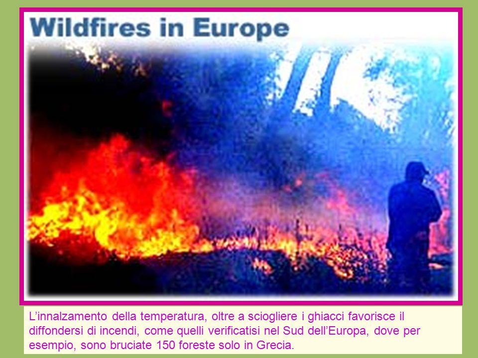 L'innalzamento della temperatura, oltre a sciogliere i ghiacci favorisce il diffondersi di incendi, come quelli verificatisi nel Sud dell'Europa, dove per esempio, sono bruciate 150 foreste solo in Grecia.