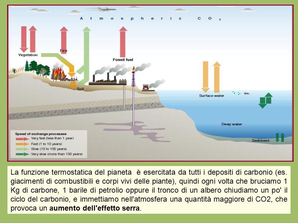 La funzione termostatica del pianeta è esercitata da tutti i depositi di carbonio (es. giacimenti di combustibili e corpi vivi delle piante), quindi o