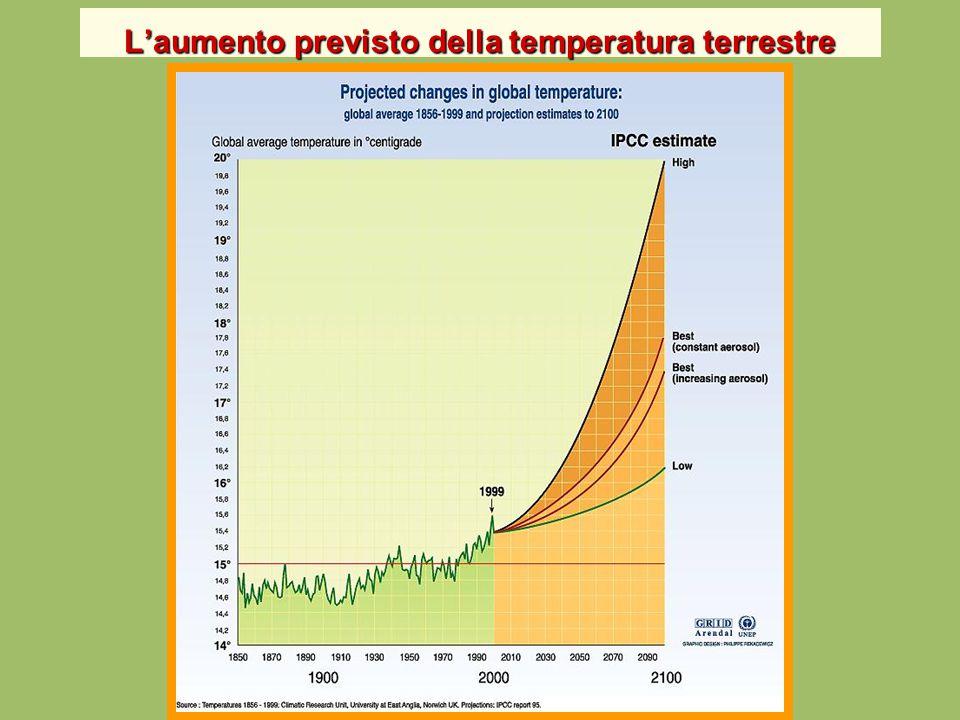 L'impatto sugli ecosistemi L'impatto sugli ecosistemi Le temperature nelle zone antartiche sono cresciute 5 volte più velocemente che nel resto del globo, seguite anche dalle zone artiche.