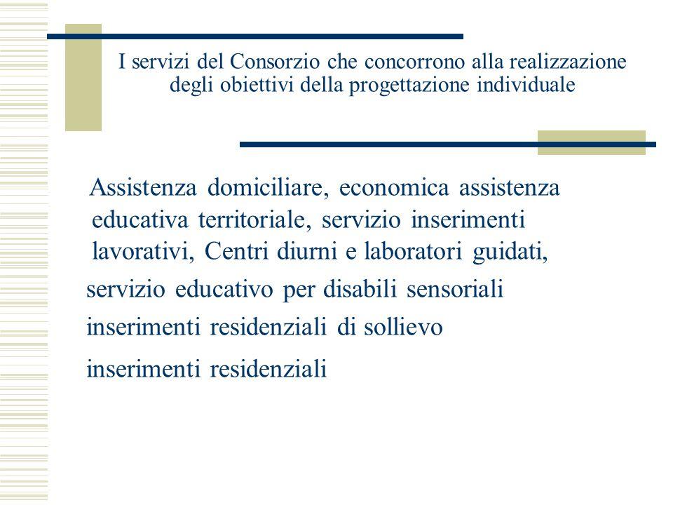 I servizi del Consorzio che concorrono alla realizzazione degli obiettivi della progettazione individuale Assistenza domiciliare, economica assistenza