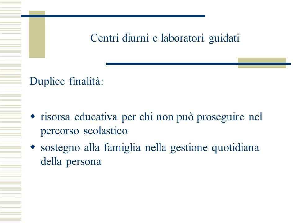Centri diurni e laboratori guidati Duplice finalità:  risorsa educativa per chi non può proseguire nel percorso scolastico  sostegno alla famiglia n