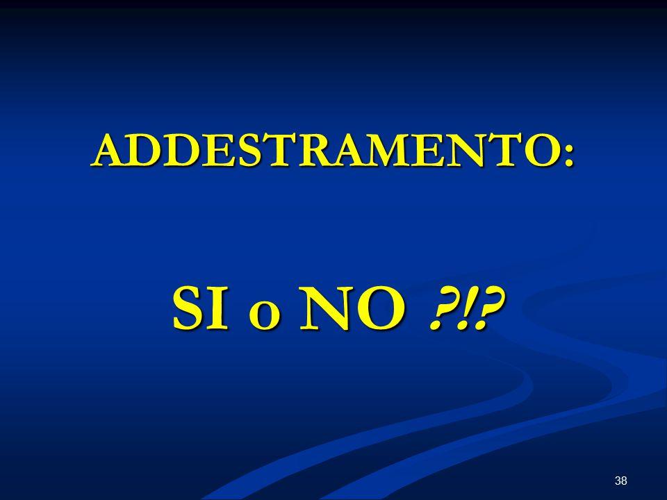 38 ADDESTRAMENTO: SI o NO ?!?