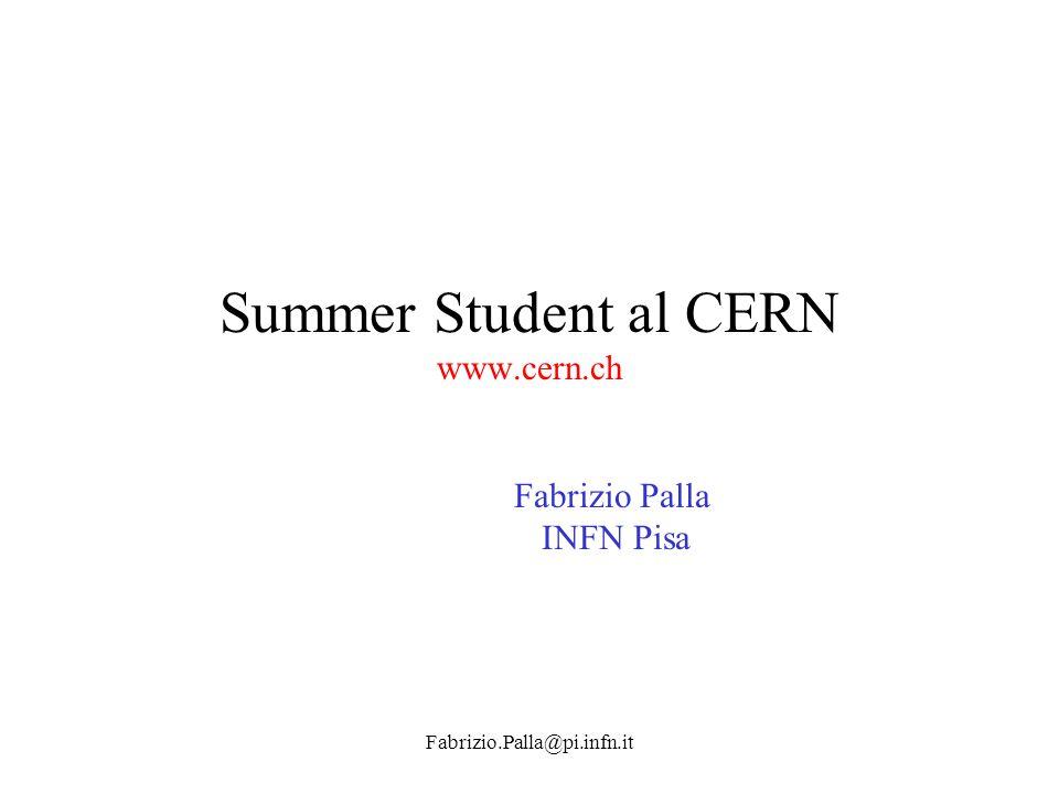 Fabrizio.Palla@pi.infn.it Summer Student al CERN www.cern.ch Fabrizio Palla INFN Pisa