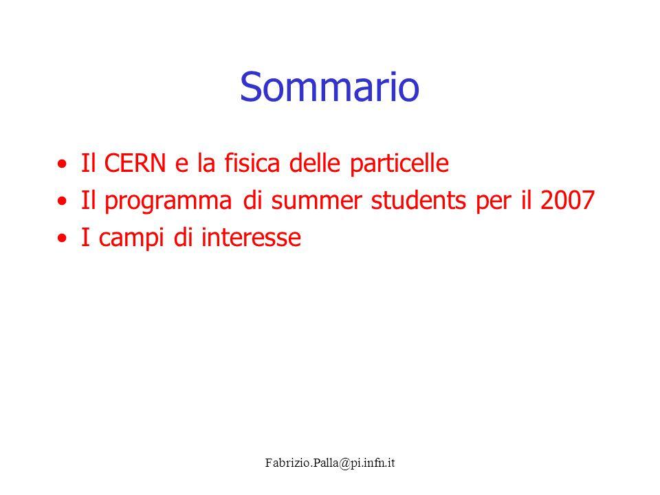 Fabrizio.Palla@pi.infn.it Sommario Il CERN e la fisica delle particelle Il programma di summer students per il 2007 I campi di interesse