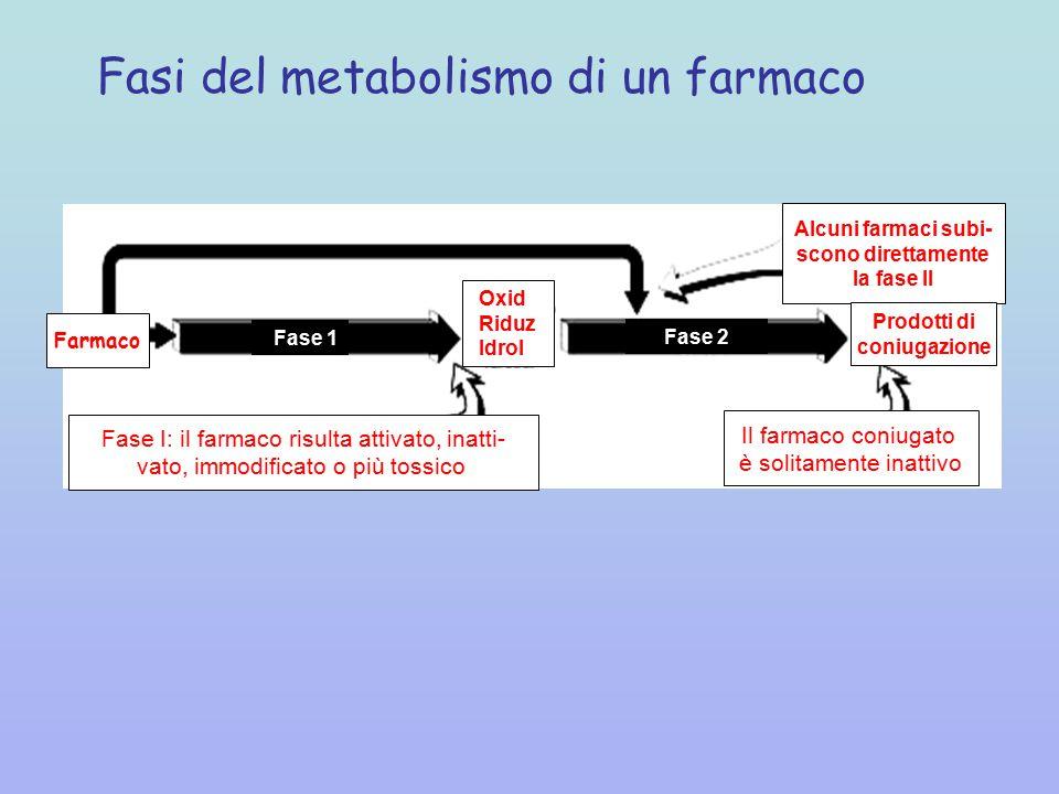 Fasi del metabolismo di un farmaco Fase 1 Fase 2 Fase I: il farmaco risulta attivato, inatti- vato, immodificato o più tossico Il farmaco coniugato è solitamente inattivo Alcuni farmaci subi- scono direttamente la fase II Prodotti di coniugazione Farmaco Oxid Riduz Idrol