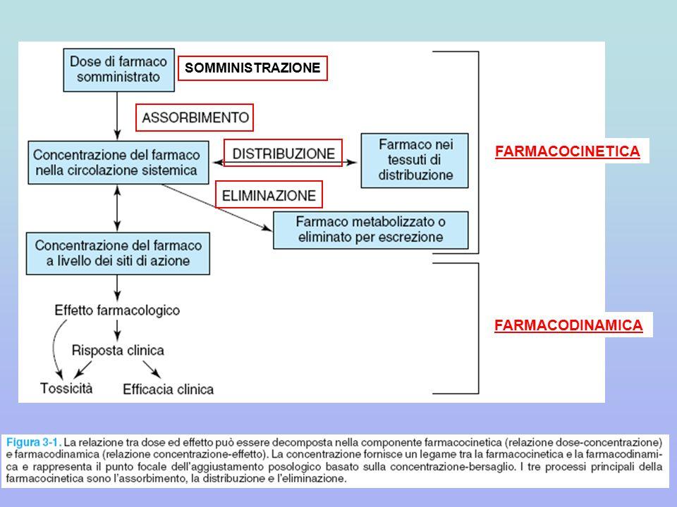 SOMMINISTRAZIONE FARMACOCINETICA FARMACODINAMICA
