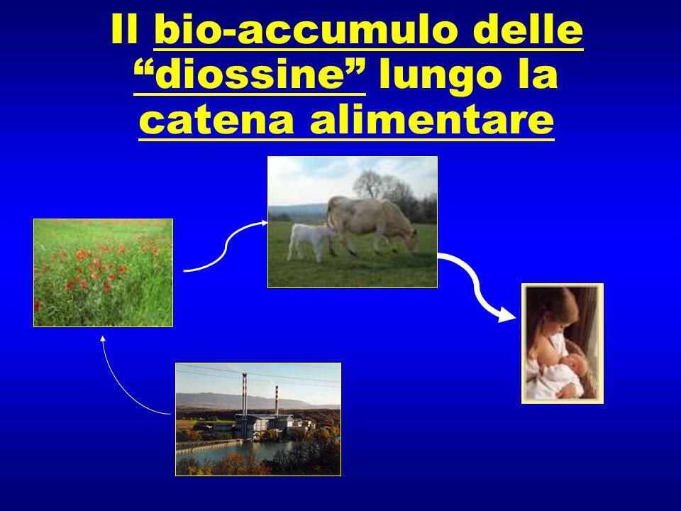 """Il bio-accumulo delle """"diossine"""" lungo la catena alimentare"""