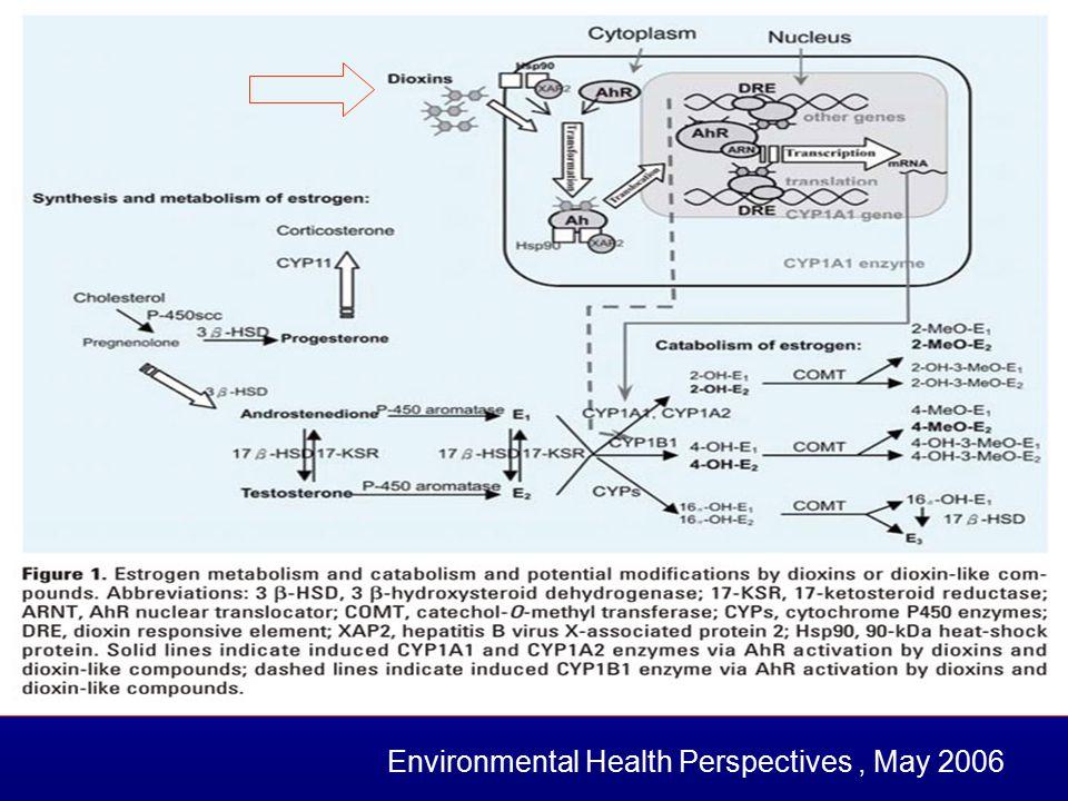 Environmental Health Perspectives, May 2006