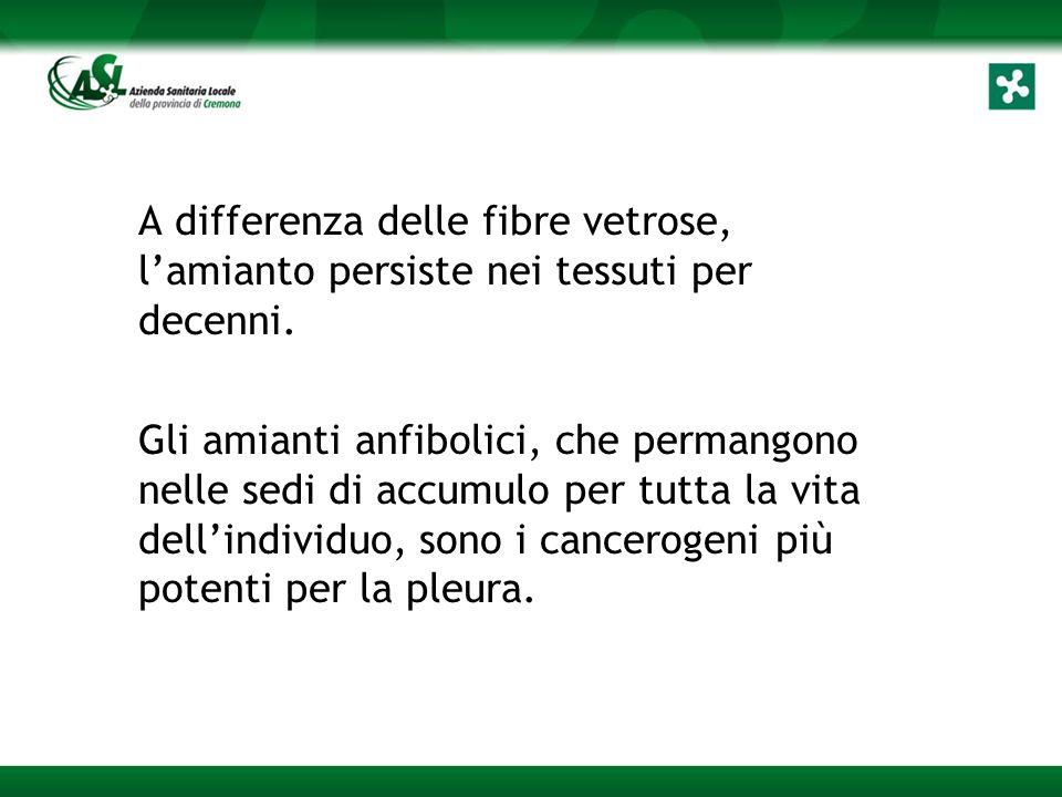 A differenza delle fibre vetrose, l'amianto persiste nei tessuti per decenni.