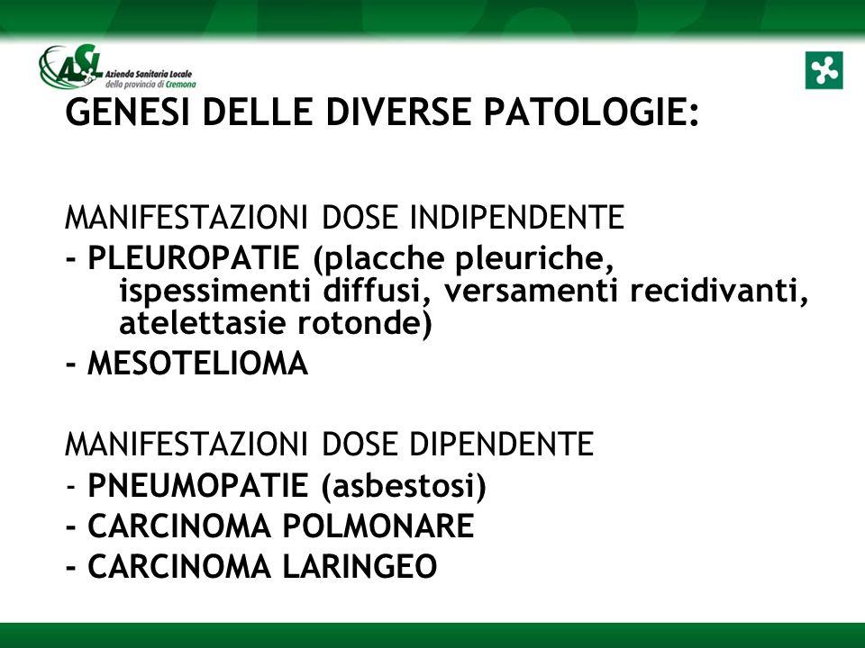 GENESI DELLE DIVERSE PATOLOGIE: MANIFESTAZIONI DOSE INDIPENDENTE - PLEUROPATIE (placche pleuriche, ispessimenti diffusi, versamenti recidivanti, atelettasie rotonde) - MESOTELIOMA MANIFESTAZIONI DOSE DIPENDENTE - PNEUMOPATIE (asbestosi) - CARCINOMA POLMONARE - CARCINOMA LARINGEO