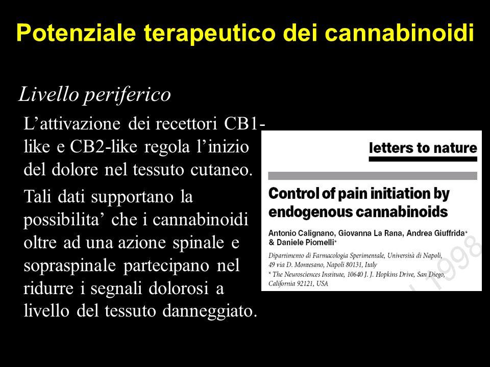 Potenziale terapeutico dei cannabinoidi Livello periferico L'attivazione dei recettori CB1- like e CB2-like regola l'inizio del dolore nel tessuto cutaneo.