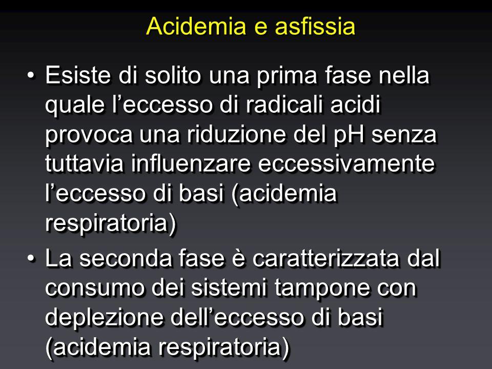 Acidemia e asfissia Esiste di solito una prima fase nella quale l'eccesso di radicali acidi provoca una riduzione del pH senza tuttavia influenzare eccessivamente l'eccesso di basi (acidemia respiratoria)Esiste di solito una prima fase nella quale l'eccesso di radicali acidi provoca una riduzione del pH senza tuttavia influenzare eccessivamente l'eccesso di basi (acidemia respiratoria) La seconda fase è caratterizzata dal consumo dei sistemi tampone con deplezione dell'eccesso di basi (acidemia respiratoria)La seconda fase è caratterizzata dal consumo dei sistemi tampone con deplezione dell'eccesso di basi (acidemia respiratoria) Esiste di solito una prima fase nella quale l'eccesso di radicali acidi provoca una riduzione del pH senza tuttavia influenzare eccessivamente l'eccesso di basi (acidemia respiratoria)Esiste di solito una prima fase nella quale l'eccesso di radicali acidi provoca una riduzione del pH senza tuttavia influenzare eccessivamente l'eccesso di basi (acidemia respiratoria) La seconda fase è caratterizzata dal consumo dei sistemi tampone con deplezione dell'eccesso di basi (acidemia respiratoria)La seconda fase è caratterizzata dal consumo dei sistemi tampone con deplezione dell'eccesso di basi (acidemia respiratoria)