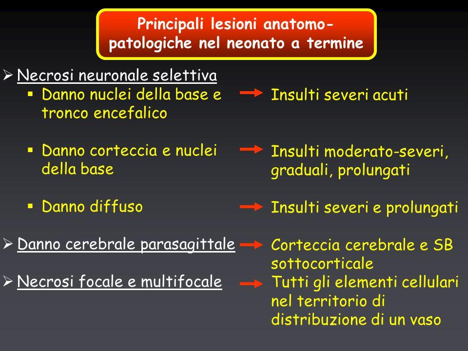 Principali lesioni anatomo- patologiche nel neonato a termine  Necrosi neuronale selettiva  Danno nuclei della base e tronco encefalico  Danno corteccia e nuclei della base  Danno diffuso  Danno cerebrale parasagittale  Necrosi focale e multifocale Insulti severi acuti Insulti moderato-severi, graduali, prolungati Insulti severi e prolungati Corteccia cerebrale e SB sottocorticale Tutti gli elementi cellulari nel territorio di distribuzione di un vaso