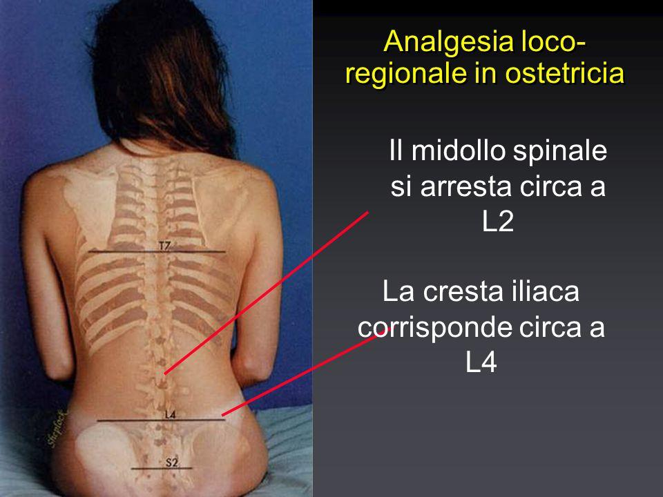 Analgesia loco- regionale in ostetricia La cresta iliaca corrisponde circa a L4 Il midollo spinale si arresta circa a L2