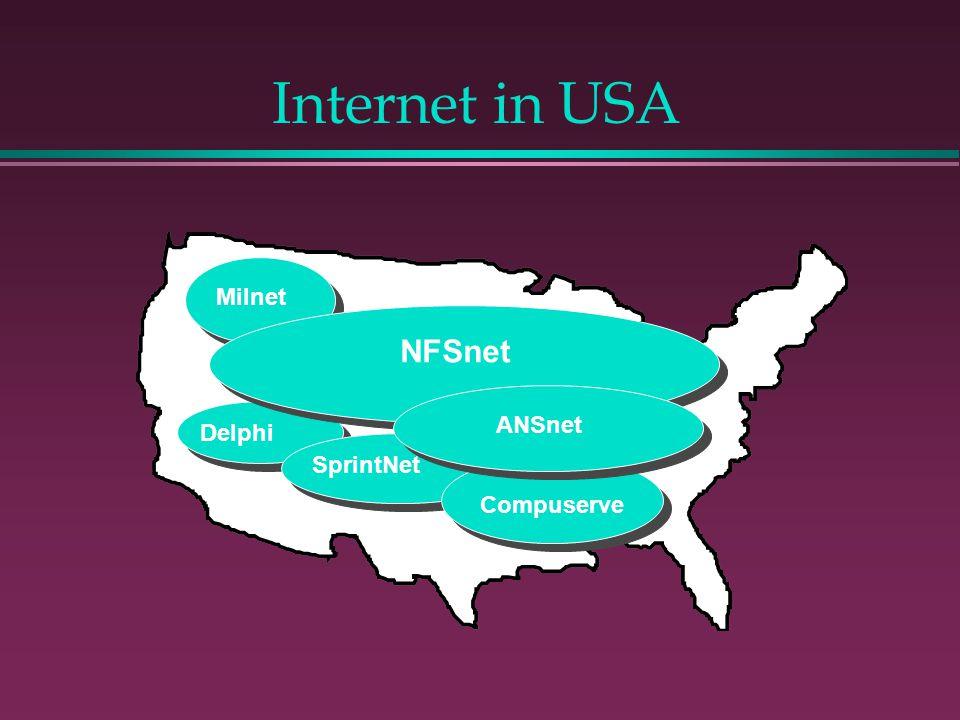 Internet in USA NFSnet ANSnet Compuserve SprintNet Delphi Milnet